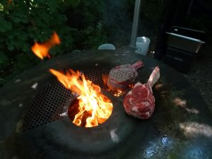 Beef Tasting Worrms 7