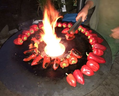 Feuertonne, Feuerring, Plate, PFALZ BBQ, 14